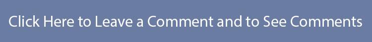LeaveComment