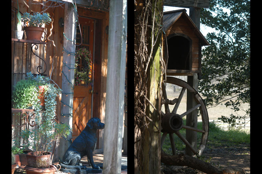 backdoorCathouse