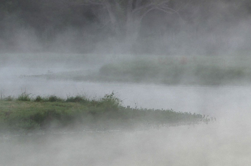 fog-rising-from-water